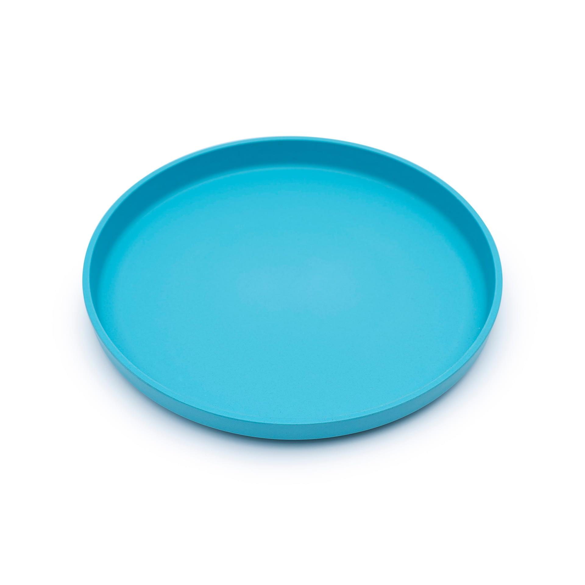1.individual.blue.plate.lr